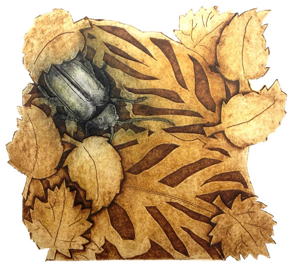 Beetle collagraph print