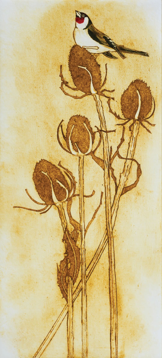 Goldfinch collagraph print