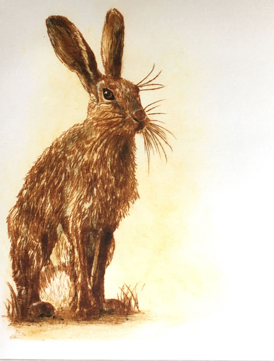 The Thoughtful Hare drypoint print