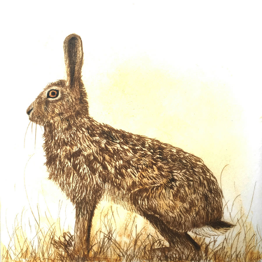The Watchful Hare drypoint print